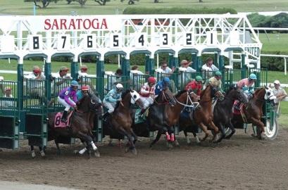 starting gate saratoga dot com