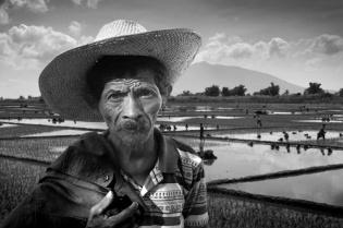 filipino-farmerakoni-hegemonia